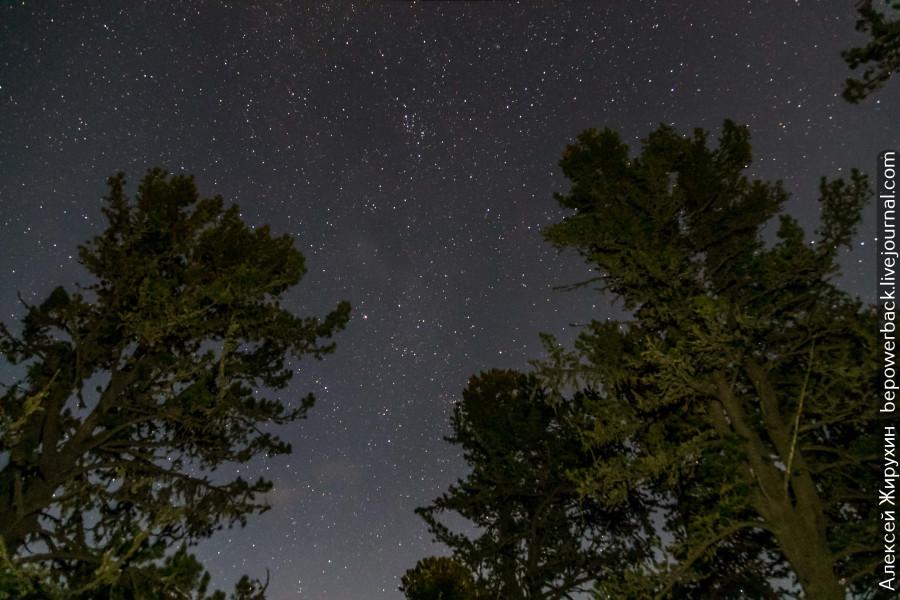Ночное звездное небо Алтая