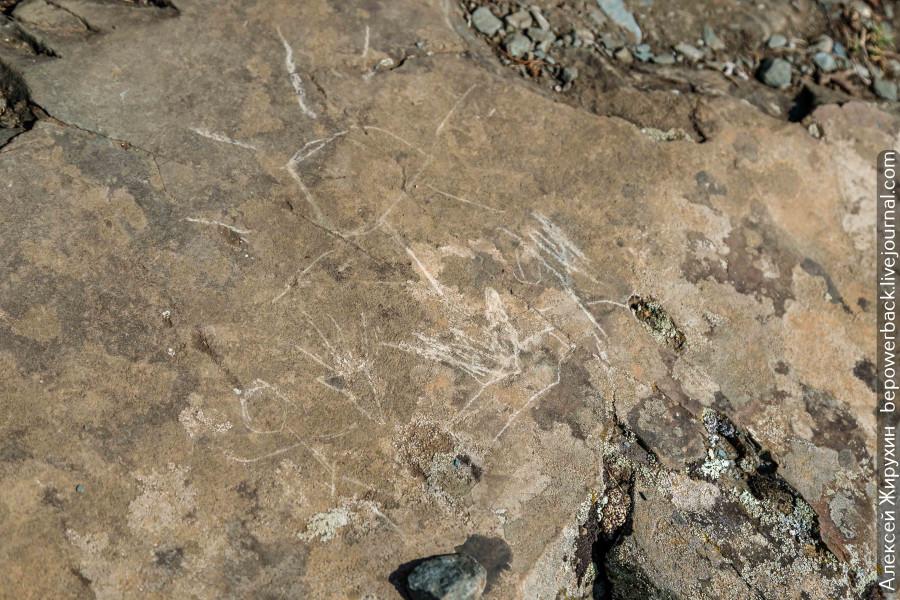 Что скрывают алтайские петроглифы? -