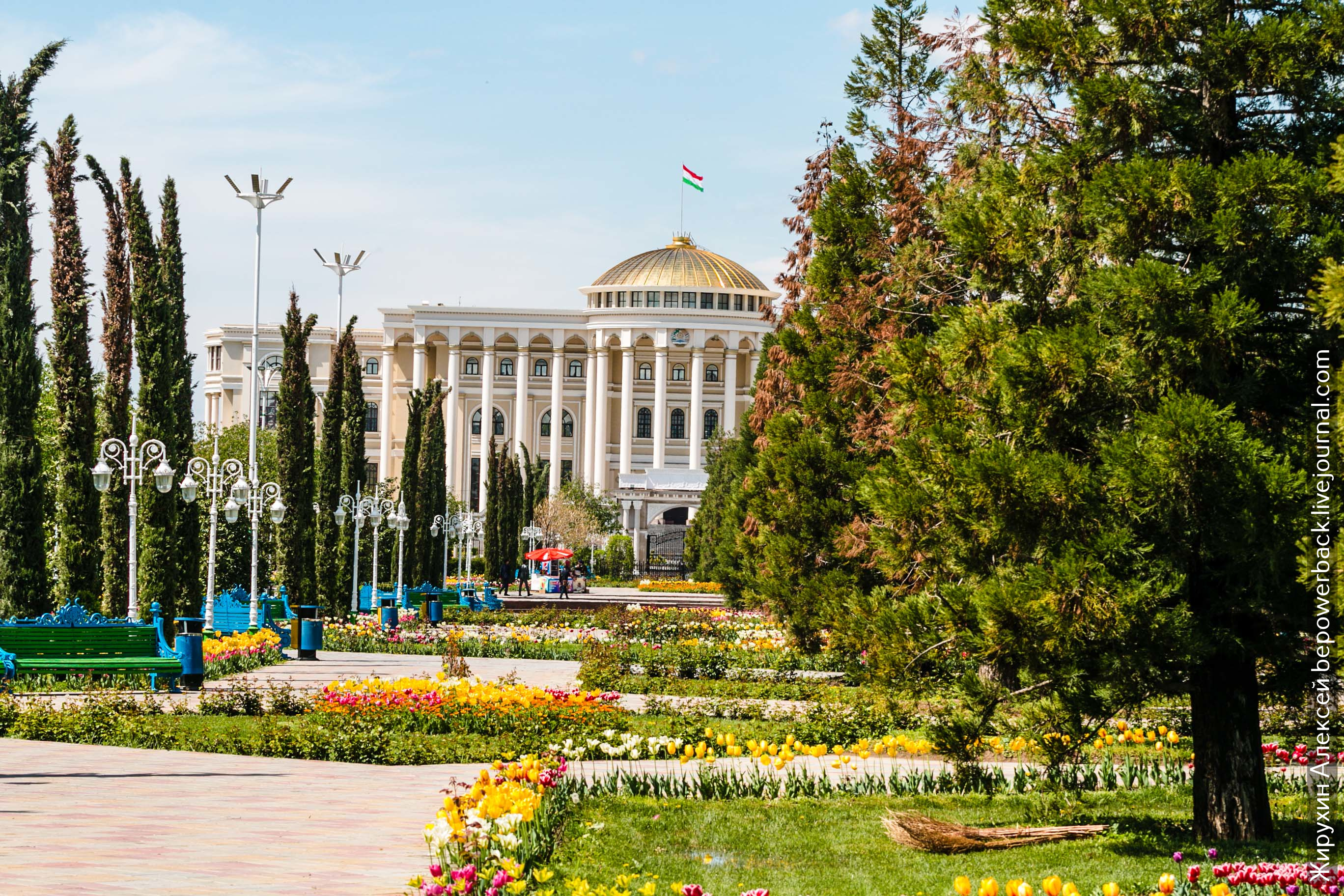 посмотреть картинки таджикистан волне популярности данного