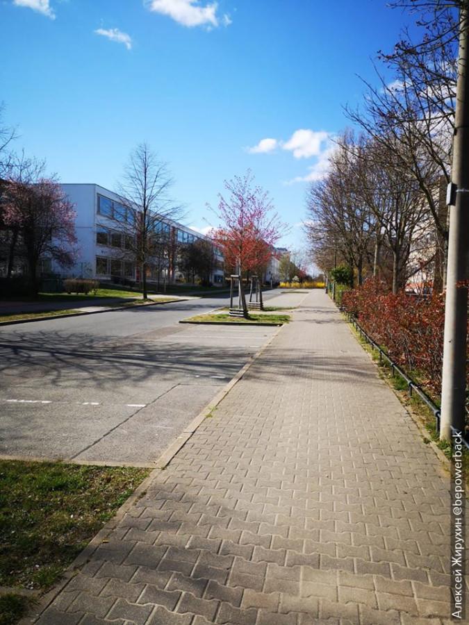 Карантин в Германии как пример эффективной системы