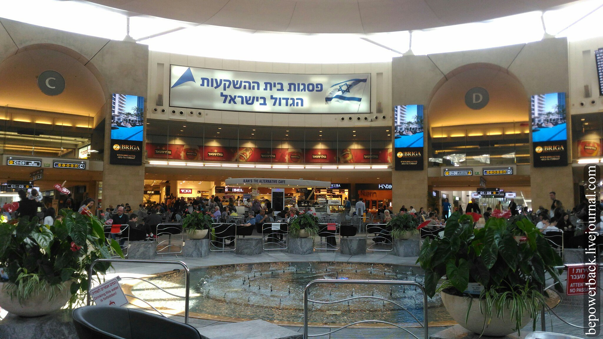 Аэропорт бен гурион схема фото 336