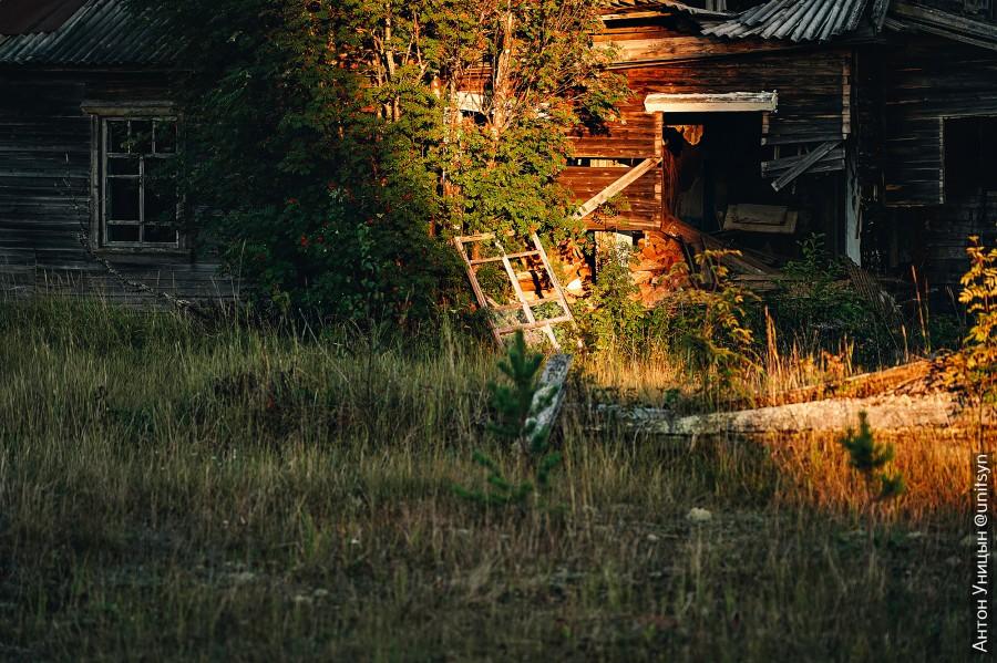 Плыли на катере по Печоре и нашли заброшенный поселок, куда нет дорог.