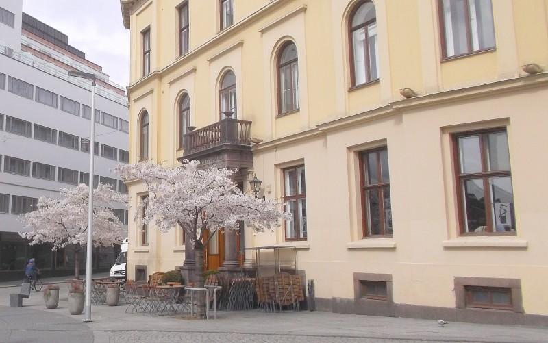 Oslo_28.04 (23)