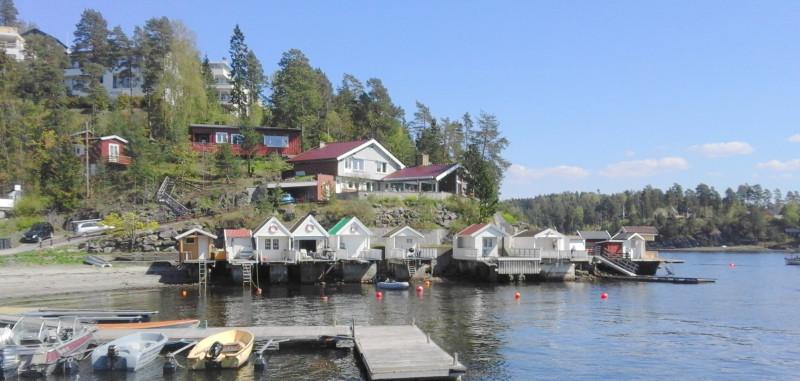 Nesøya (1)