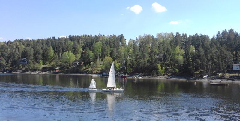 Nesøya (39)