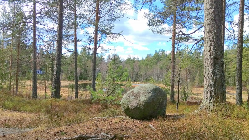 Norway_22_04_2017 (76)