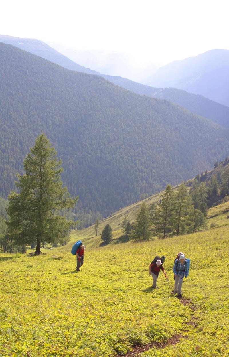 Подьем на перевал Пологий