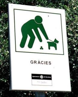 спасибо тебе за какашку о Собака