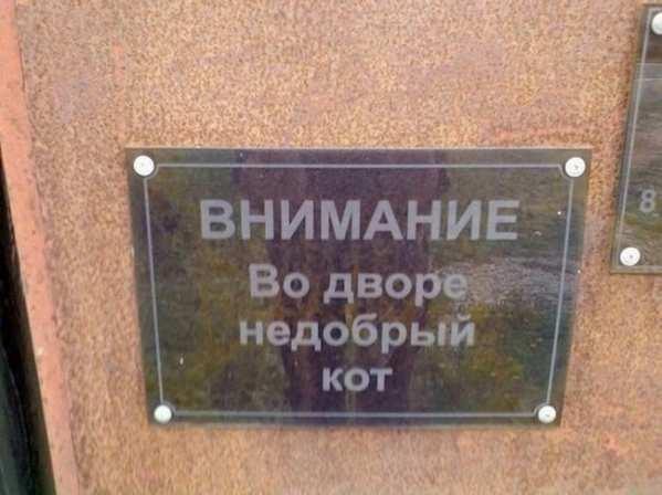 stimka.ru_1401373818_1401306540_5718655-r3l8t8d-650-1400479735_podborka-udivitelnyh-marazmov-1