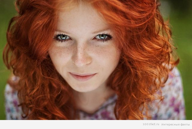 1350368494_redheads_1