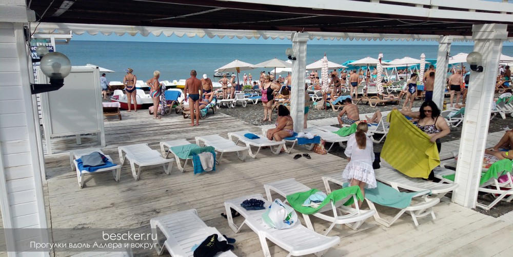 Адлер пляж Чайка (6)