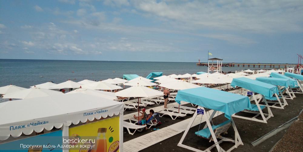 Адлер пляж Чайка (8)