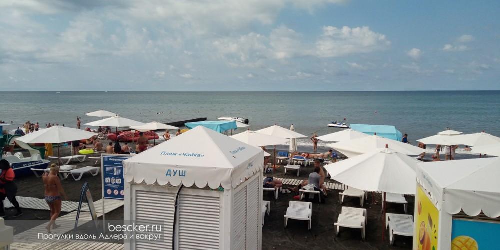 Адлер пляж Чайка (9)