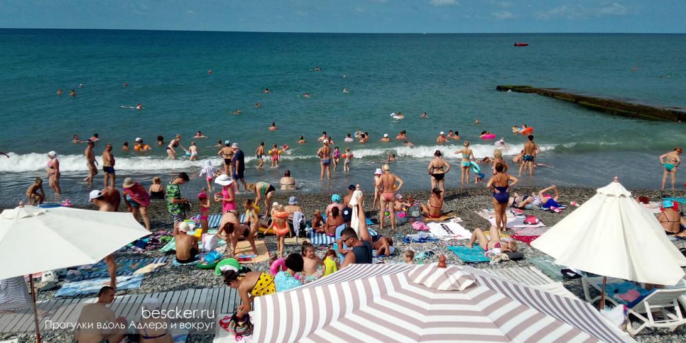 Адлер пляж Чайка (14)