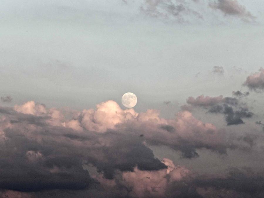Луна в потрохах