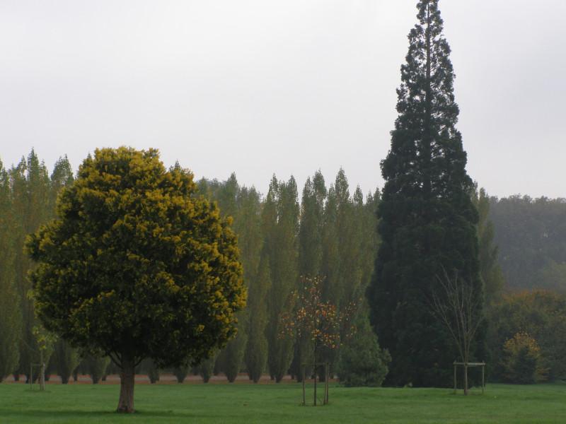 Природа вокруг Малого Трианона
