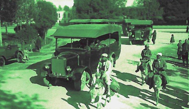 Зелёный декабрь в Ташкенте ровно 100 лет назад