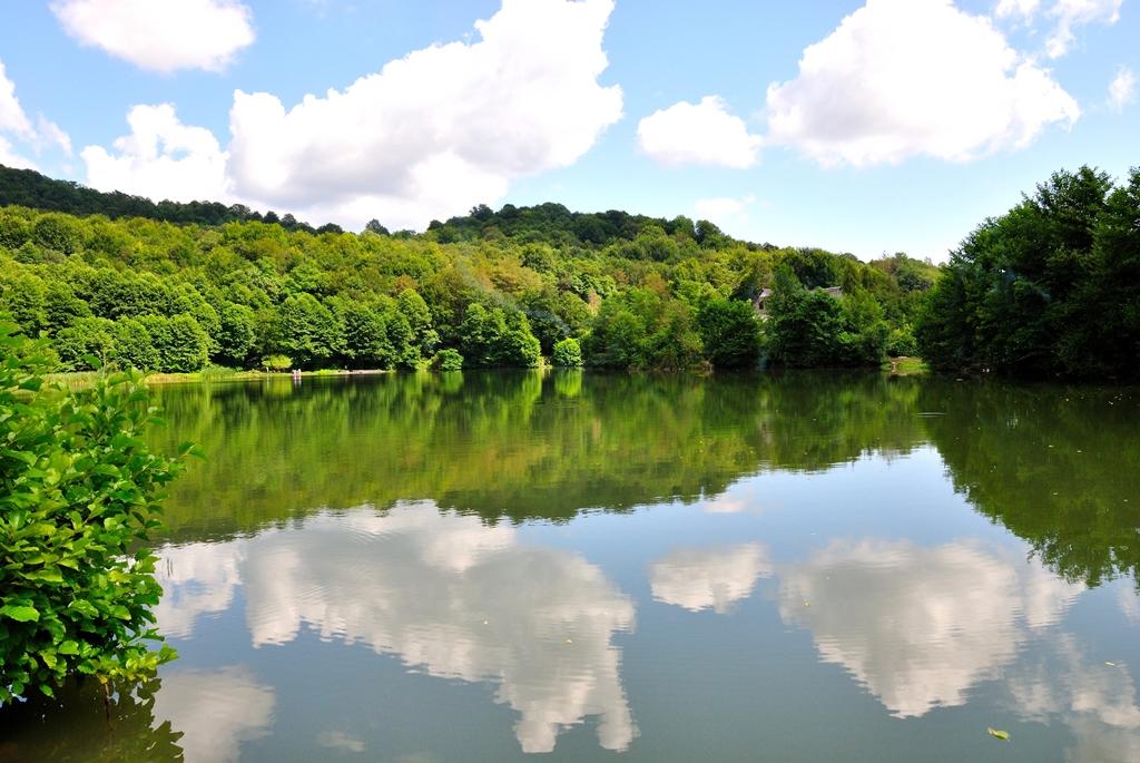 печень всегда калиновое озеро сочи фото представляет собой