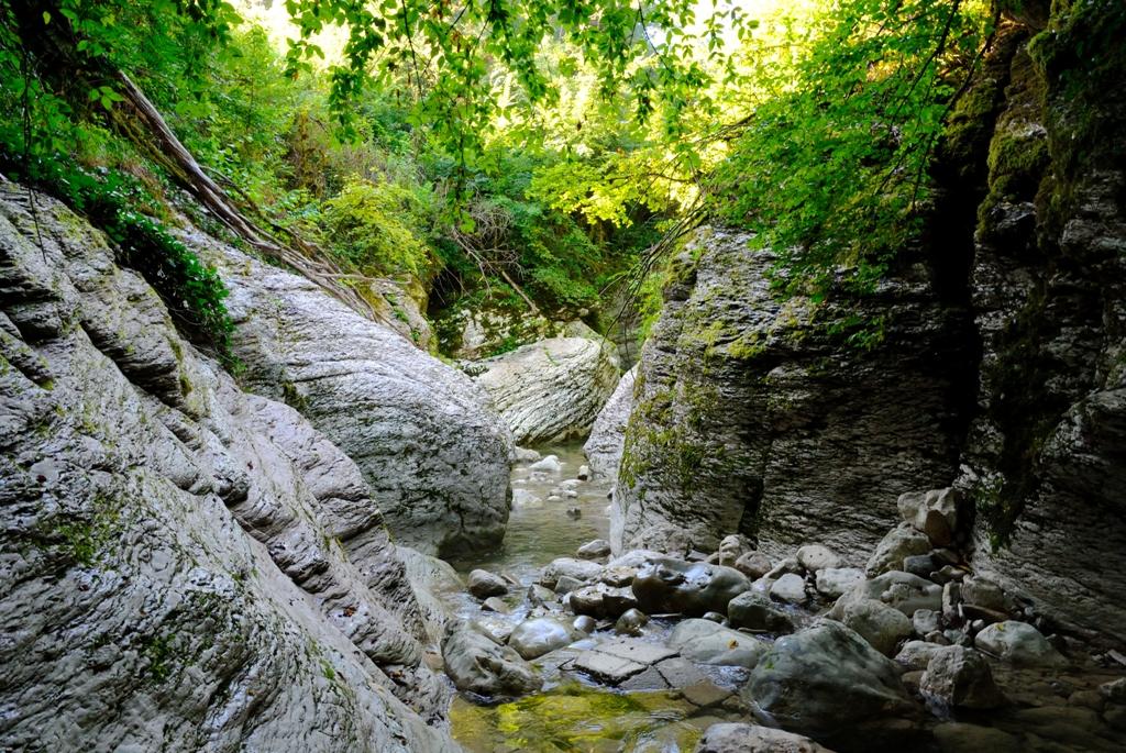 Пещеры в Лесу Грибов в игре Subnautica - уникальный биом | 685x1024