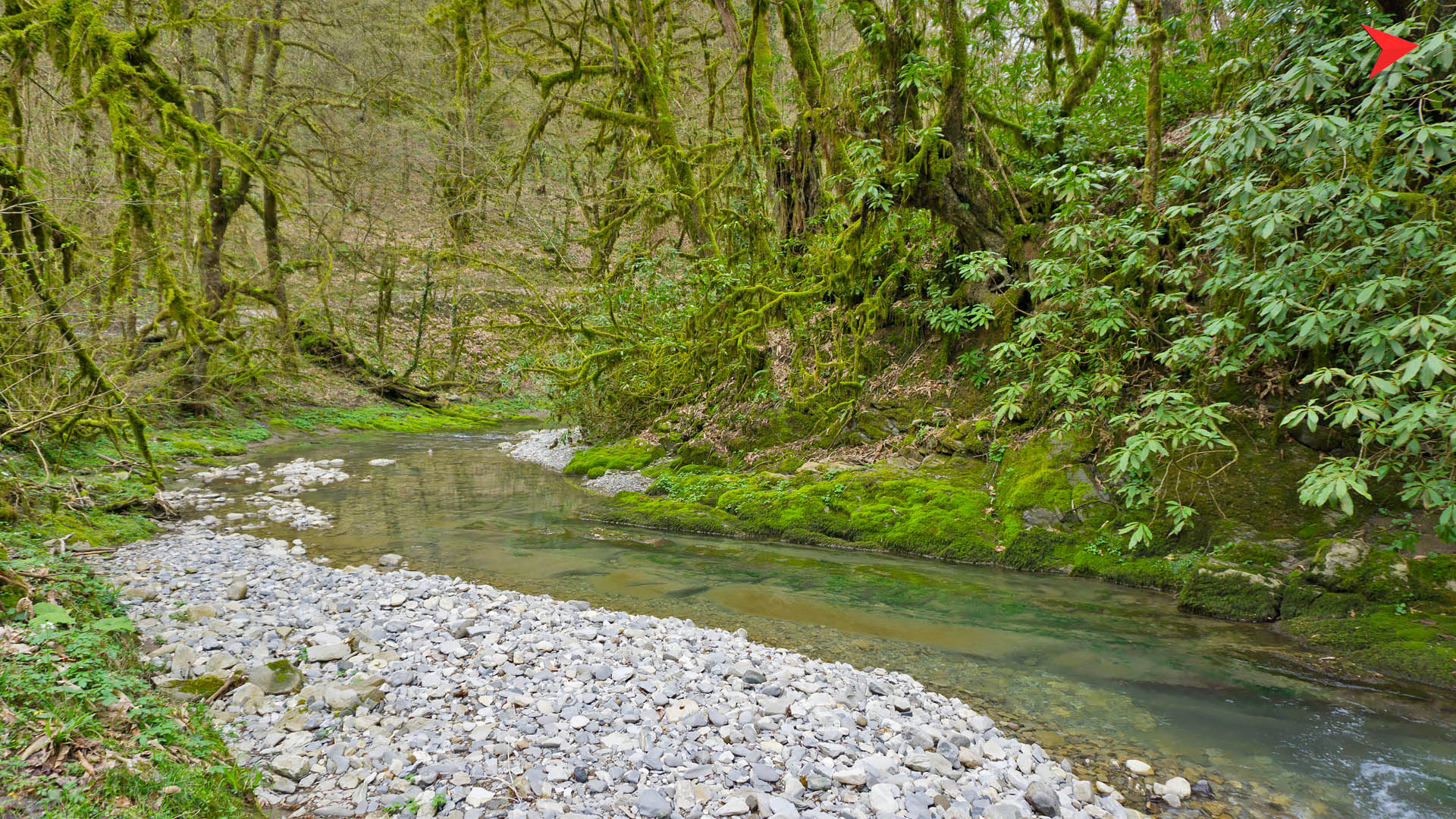 трети реки рядом с лоо фото картинка