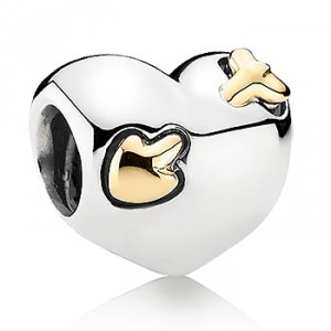PANDORA_Jewellery_Silver_Gold_Charm_Bead_By_2013_The_Sea_Collection__791171-01 (1)