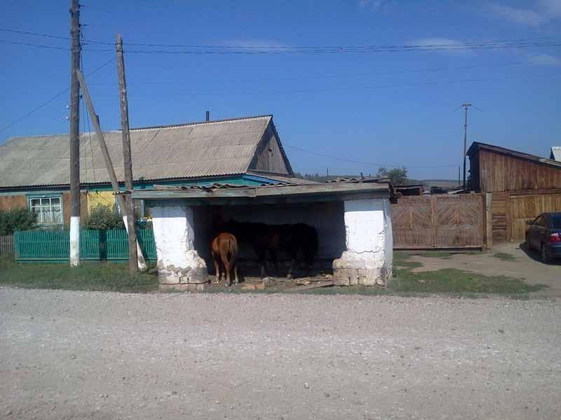 Остановка для лошадей