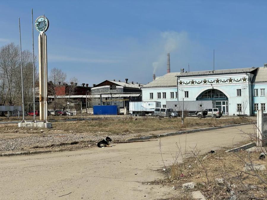 Активисты экологи из Усолья-Сибирского попытались «достучаться до небес»... - фото 3