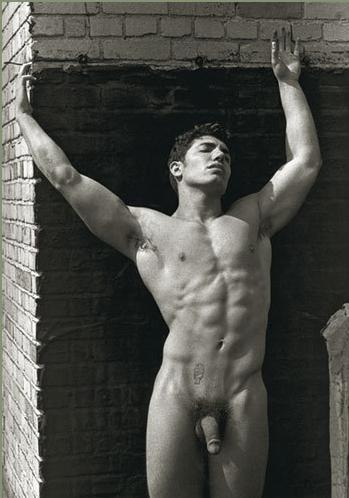 nudes David vance male