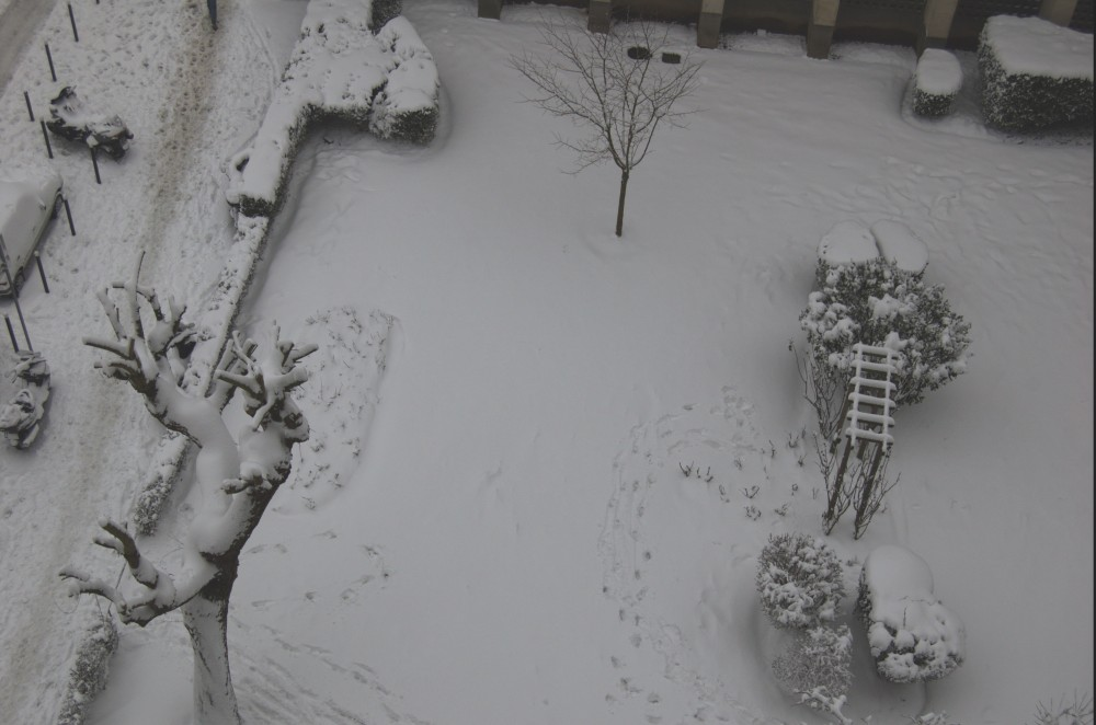 sneg v medone2