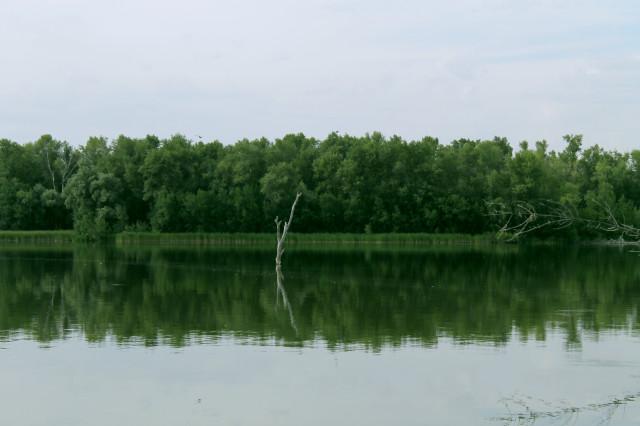 Денежное озеро. Волгоградская область. Виды