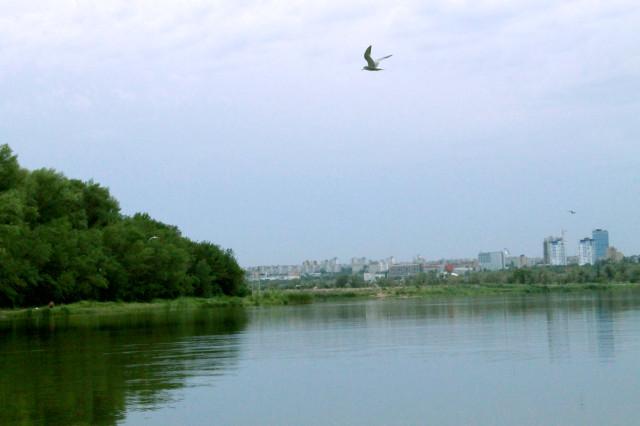 Волгоградская область. Денежное озеро.