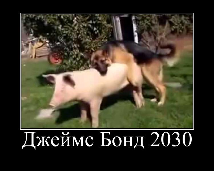 ДБ 2030