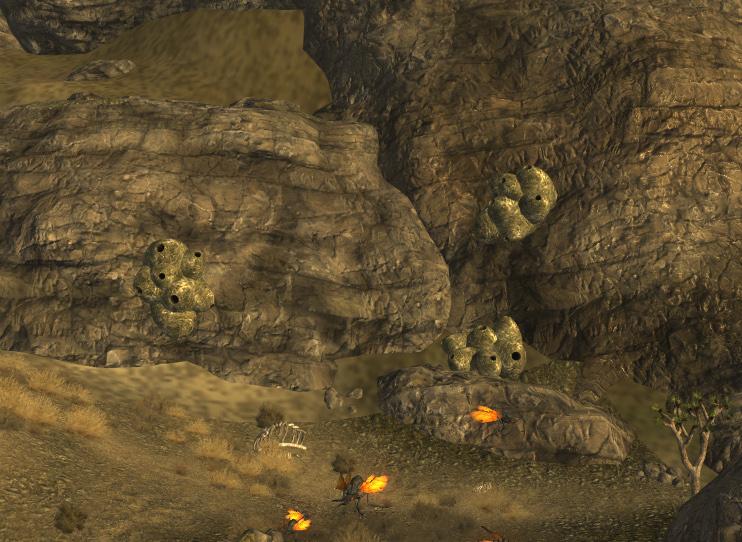 Hidden_Cazador_Nest small