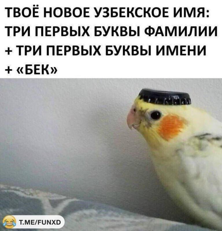узбек
