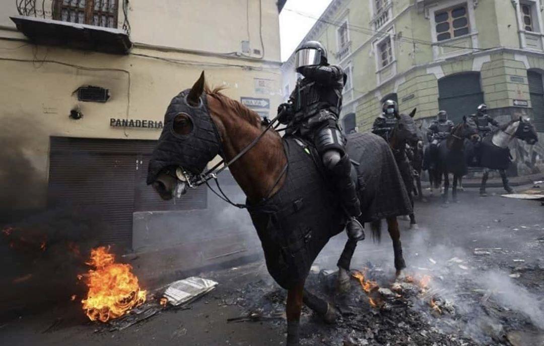 конная-полиция-протесты-5706054