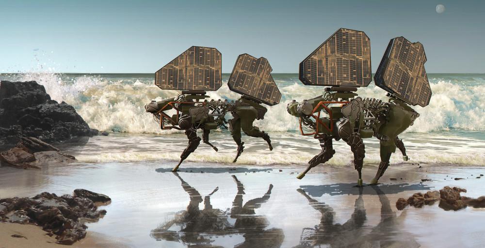 goran-trpkov-beachpups