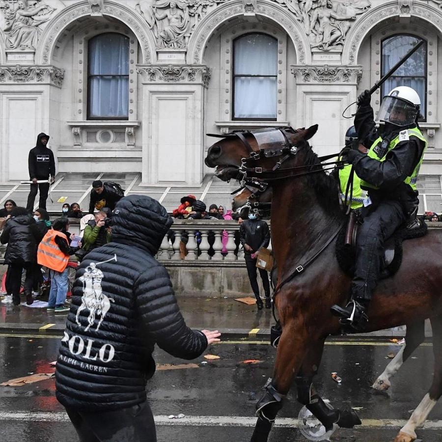 фото-полицейский-лошадь-6783260