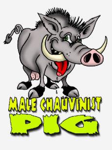 male_chauvinist_pig_t_shirt-r17976300f138488fb6d9acba6f2cf8b8_k2gr0_307