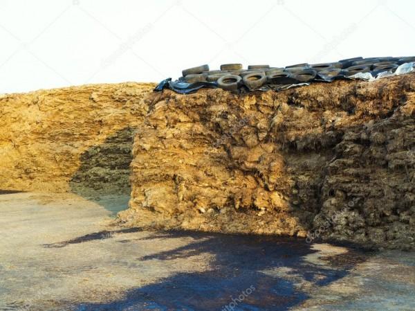 depositphotos_81666016-stock-photo-manure-heap