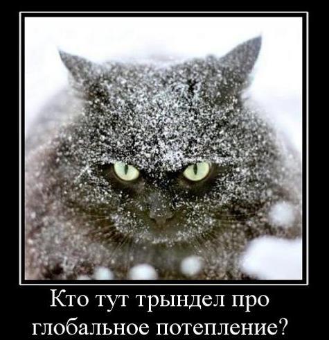 628709_kto-tut-tryindel-pro-globalnoe-poteplenie