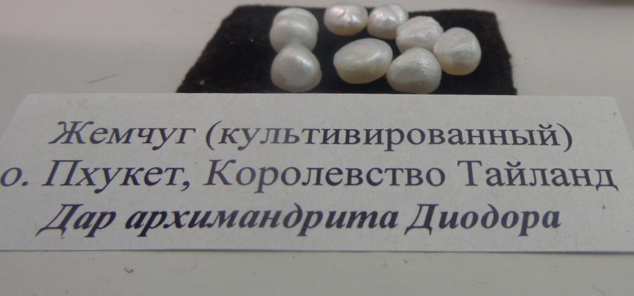 12 DSC04946