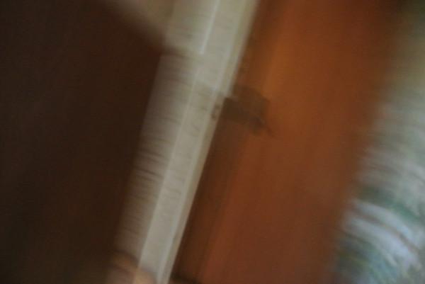 DSC_0114 Этюд в полосочку