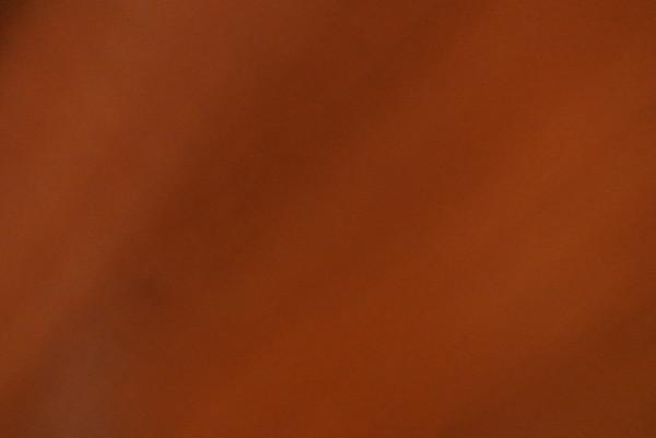 DSC_0116 этюд в багровых тонах