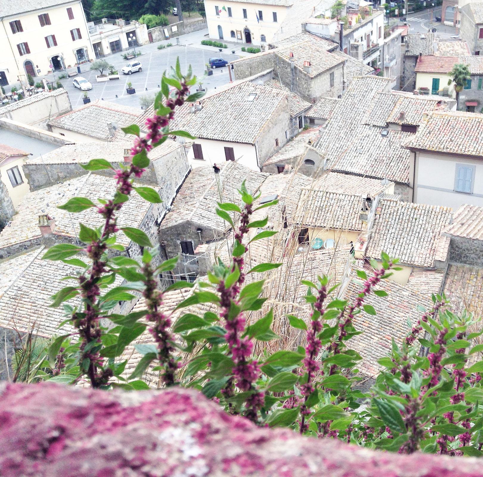 путешествия италия итальянцы шоппинг шопоголизм осенний шопинг