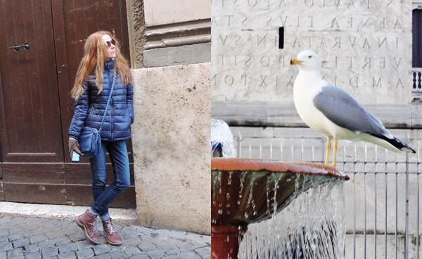 я и чайка