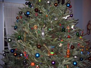 Ornament Details (Left Side)
