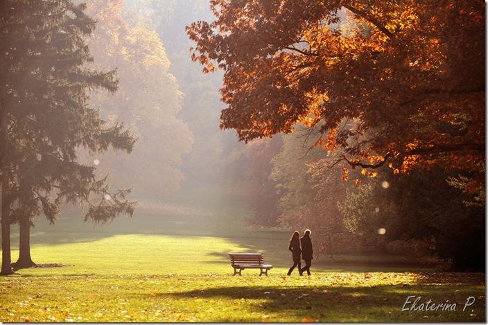 осень влюблённые фото