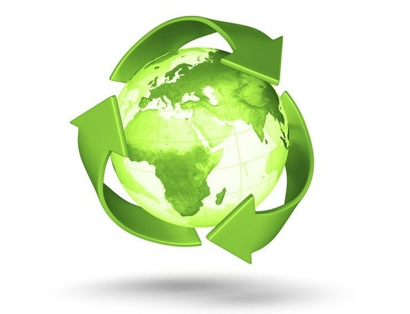 safeguard the environment essay