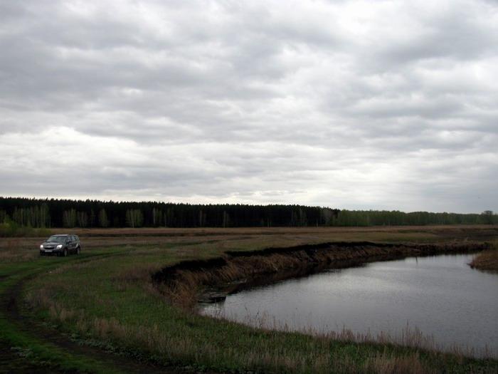 Pallas way in Kurgan region 2012 187