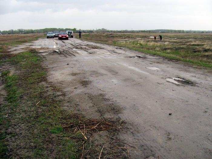 Pallas way in Kurgan region 2012 194